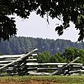Fence at Appomattox Poster by Teresa Mucha
