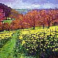 Fields of Golden Daffodils Print by David Lloyd Glover