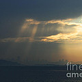 Filtered Light Through San Francisco Skyline Print by Wingsdomain Art and Photography