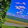 Finger Lakes Country Print by Elizabeth Hoskinson