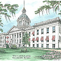 Florida Capitol 1902 Poster by Audrey Peaty