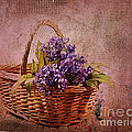 Flower Basket Print by Judi Bagwell