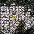 Flower Bottle Cap Mosaic Poster by Paul Van Scott