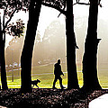 Foggy Day to walk the dog Poster by Harry Neelam