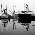Foggy Reflections bw Print by Kami McKeon