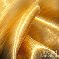 Folding Gold Print by Artist and Photographer Laura Wrede