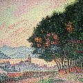 Forest near St Tropez Poster by Paul Signac