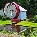 Franconia Notch Waterwheel Print by Catherine Reusch  Daley