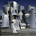 Frank Gehry Designed The Frederick R Poster by Everett
