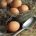 Fresh brown eggs in old tin container with spoon  Poster by Sandra Cunningham