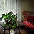 Furniture - Plant - Ivy in a window  Poster by Mike Savad