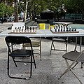 Game Of Chess Anyone Print by Terry Wallace
