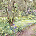 Garden Path Print by Mildred Anne Butler