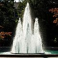 Georgia Herty Field Fountain on UGA North Campus Poster by Replay Photos
