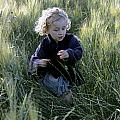 Girl running in wheat field Print by Sami Sarkis