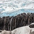Glacial Edge Waterfall Print by Mike Reid