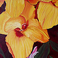 Glorious Canna Lily Poster by Wayne Devon