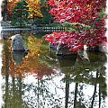 Glorious Fall Colors Reflection with Border by Carol Groenen