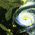 Goes 8 Satellite Image Of Hurricane Fran Poster by Science Source