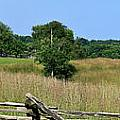 Going to Appomattox Court House Print by Teresa Mucha