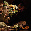 Gourds and Leaves Still Life Print by Tom Mc Nemar