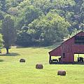 Grampa's Summer Barn Print by Jan Amiss Photography
