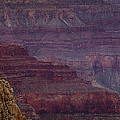 Grand Canyon Ridges Print by Andrew Soundarajan