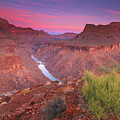 Grand Canyon Sunrise Poster by David Kiene
