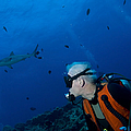 Gray Reef Shark With Diver, Papua New Print by Steve Jones