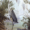 Great Blue Heron Poster by KEVIN BRANT