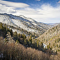 Great Smoky Mountains National Park Winter Snow Gatlinburg TN Poster by Dave Allen