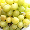 Green Grapes and Mum Poster by Barbara Griffin