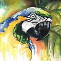 Green Parrot Poster by Anthony Burks Sr