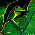 Green Tree Frog and Leaf Poster by Nick Gustafson