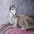 Greyhound at Rest Print by George Pedro