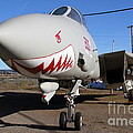 Grumman F-14A Tomcat Fighter Plane . 7D11210 Print by Wingsdomain Art and Photography