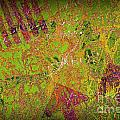 Grunge Background 4 Print by Carlos Caetano