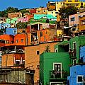 Guanajuato Hillside 1 Poster by Olden Mexico