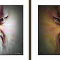 Halloween Self Portrait - Gently cross your eyes and focus on the middle image Poster by Brian Wallace