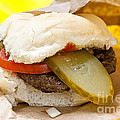 Hamburger with pickle and tomato Poster by Elena Elisseeva
