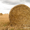 Hay Bales Poster by Edward Fielding