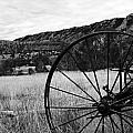 Hay Rake at the Ewing-Snell Ranch Poster by Larry Ricker