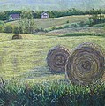 Haybales Durham County Print by Ruth Greenlaw