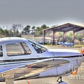 HDR Airplane Looks Plane from Afar Under Canopy Poster by Pictures HDR