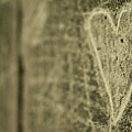 Heart Engraved On A Wall Poster by Gil Guelfucci
