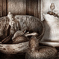 Hobby - Wood Carving - Wooden toys Print by Mike Savad