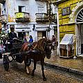 Horse and Buggy in old Cartagena Colombia Poster by David Smith