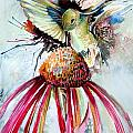 Humming Bird Print by Mindy Newman