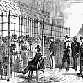 ILLEGAL VOTERS, 1876 Print by Granger