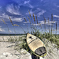 In the Dunes Print by Benanne Stiens